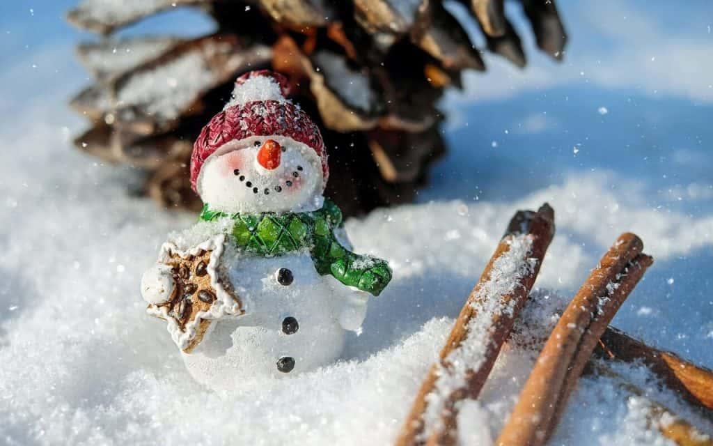 Come organizzarti al meglio durante le vacanze di Natale